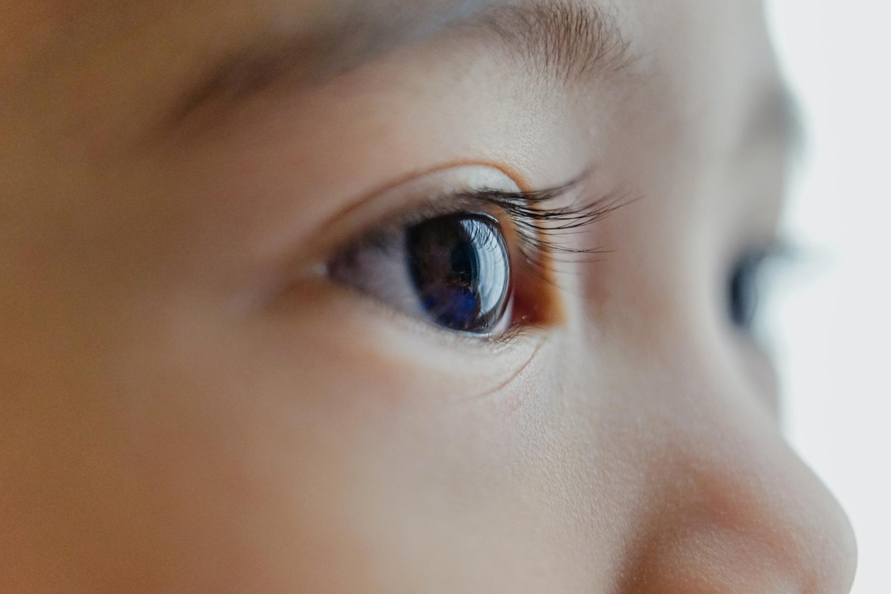 closeup of young child's eye -- false teaching cover img