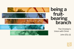 being a fruit-bearing branch in Christ sermon series